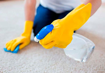 Image of a cleaner spraying a special detergent onto a stained carpet for End of Tenancy Cleaning in Cambridge.